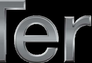 Terna. Le gioie del monopolio e l'idolatria per le rinnovabili elettriche